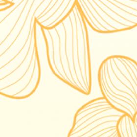 Blossom Macaroon